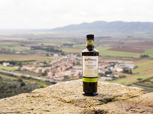 EVOO Exploration � Summer Tasting Tours and Destinations | Pour More