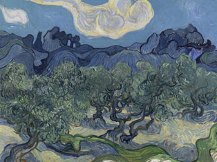 Van Gogh's Olive Trees - The Art of EVOO | Pour More